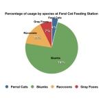 Feral Cat feeding Station pie chart